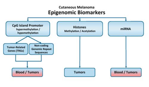 Epigenomic Biomarkers (Greenberg et al., 2014)