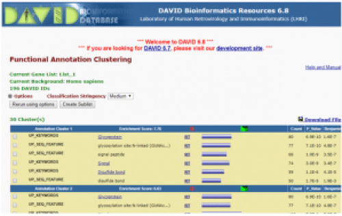 Functional annotation clustering in David