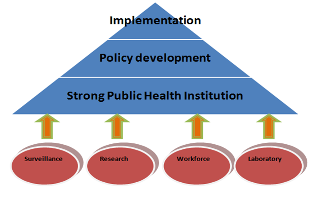 The four main components of healthcare industry that help in infectious disease management (Eybpoosh et al., 2017)