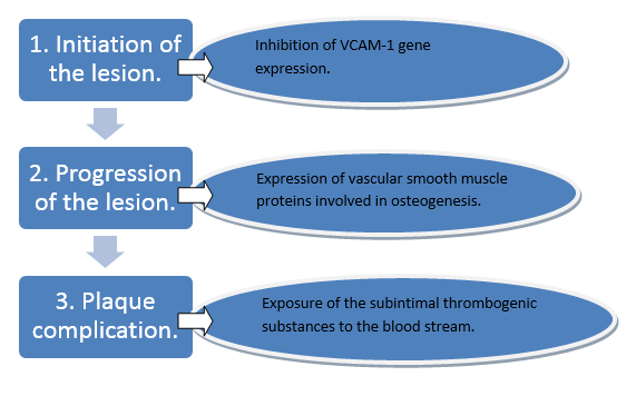 PAD is caused by the atherogensis which can be described in three stages (Espinola-Klein, 2011)