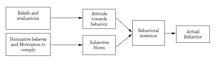 Theory of reasoned action of online consumer behaviour (Mishra et al., 2014)