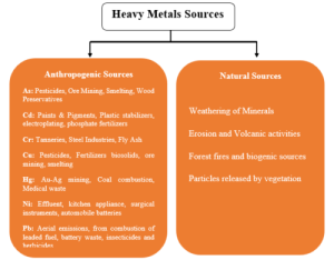 Lead as one of the most important heavy metal for soil degradation