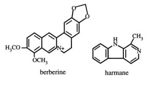 Common types of alkaloids and thier chemical structures (Cowan, 1999)