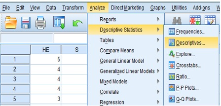 Computing the standardised value of independent variables in SPSS