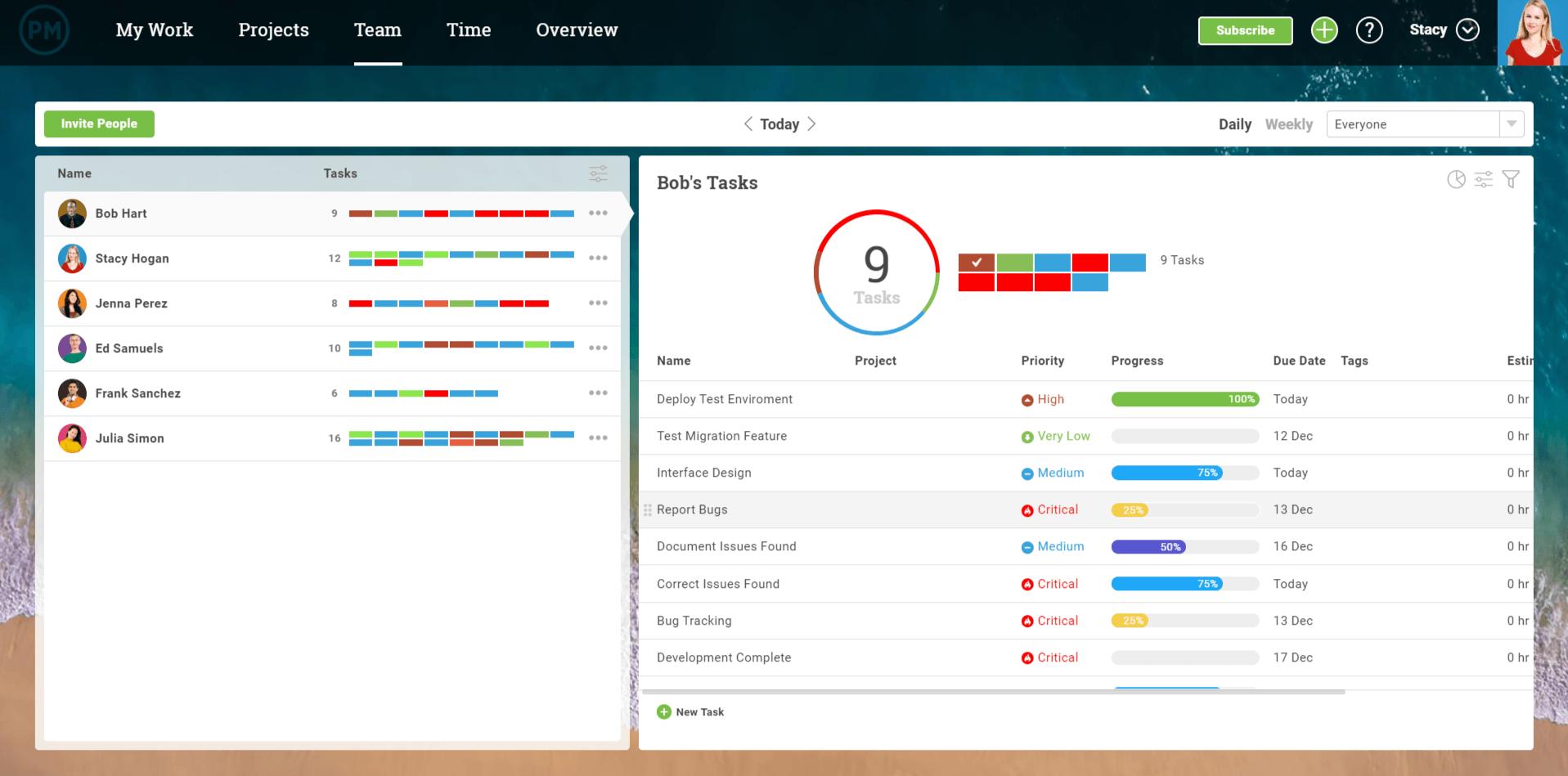 captura de pantalla de la función del equipo en projectmanager.com
