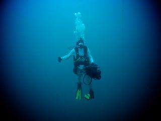Navigator Sonar with Diver in palau with bentprop