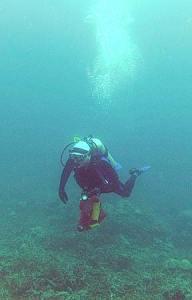 dan obrien diving palau with bentprop.org