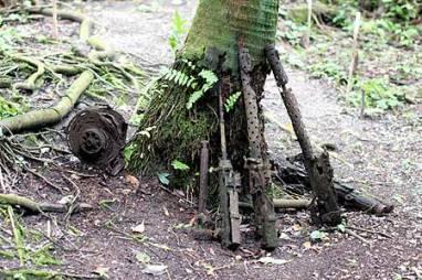 japanese guns found in jungles of palau