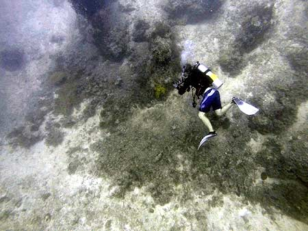 Mark right at the notch where the channel wall meets the sea floor. palau