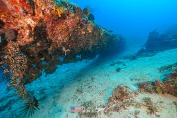 Looking down the wing of a B24 underwater WWII wreck during Solomons MIA Search - Project Recover and BentProp Project are committed to bringing the MIA home. Photos by Harry Parker Photography.com
