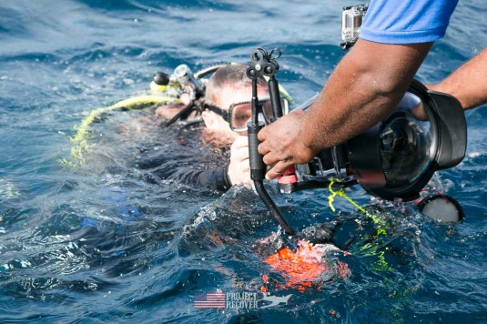 Ewan Stevenson being handed is camera while documenting a b24 WWII aircraft wreck during Solomons MIA Search - Project Recover and BentProp Project are committed to bringing the MIA home. Photos by Harry Parker Photography.com
