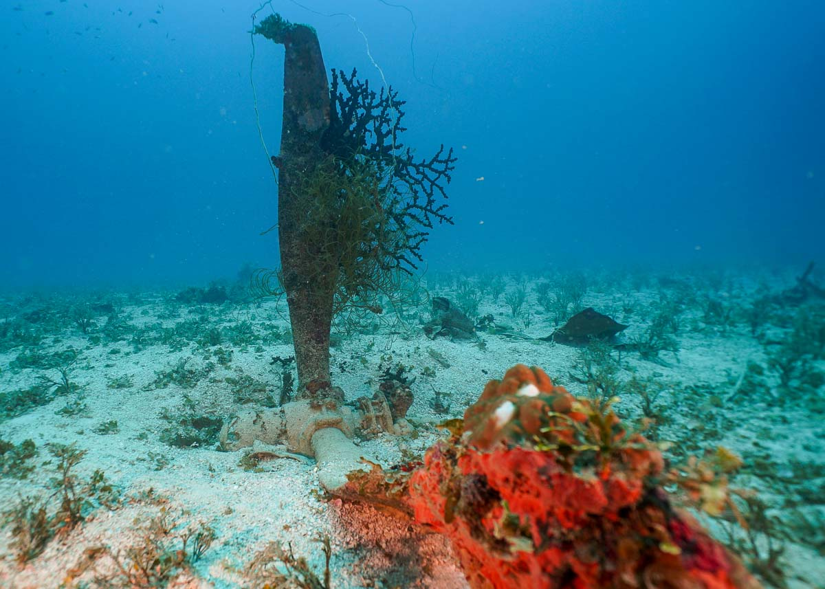 propeller of underwater WWII aircraft in Chuuk