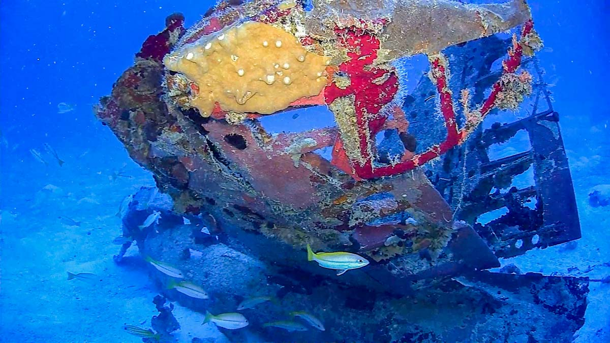 underwater photo of SBD WWII aircraft in Chuuk