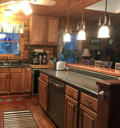 Log Cabin Kitchen: We put the dishwasher in the island. This is really not as convenient. You end up dripping all over the floor going from sink to dishwasher. I love the island. I feel like I have my own cooking show.