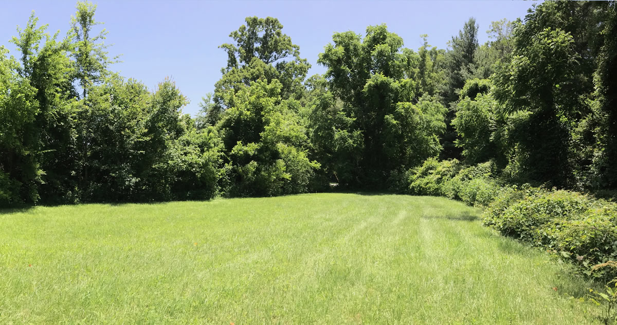 Land For Sale: .44 acre In Druid Hills, Hendersonville, NC