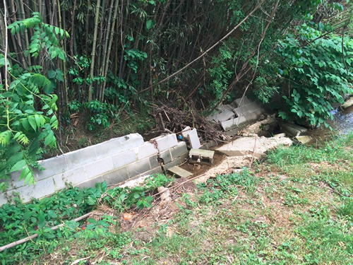 The wall collapsed into the cane, blocking the stream.