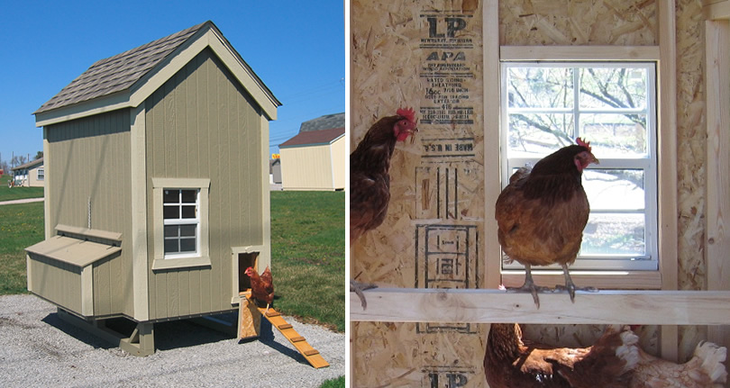 Comparing Pre-Fab Chicken Coops and Little Cottage Company Chicken Coop Kits