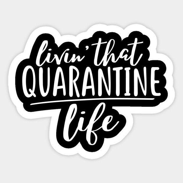 Quarantine Cruise – extended cuts