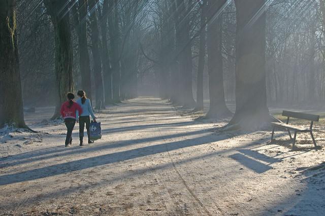 Wandeling in Vrijbroekpark Mechelen
