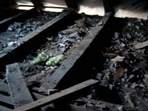 Um die Sanitärinstallation in unserem Badezimmer durchzuführen, musste auch hier der Fußboden raus, schließlich müßen die Rohre und Leitungen ja irgendwo hin.