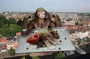 Broodje aap culinair