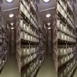 Arkiva e dosjeve