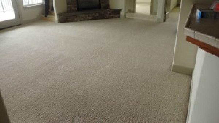 Carpet Dry Time in El Dorado County