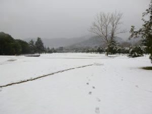 2012_Garlenda_Under_Snow_03
