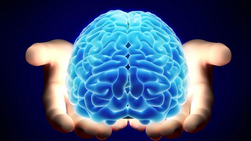 Che cos'è il neuro marketing?