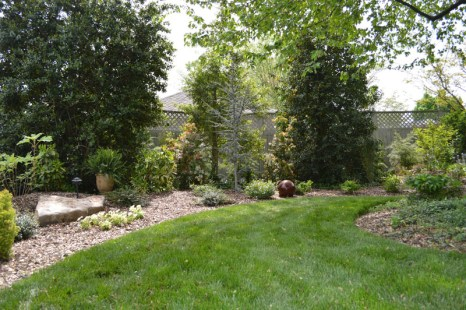 Cut Lawn and Landscaped Area