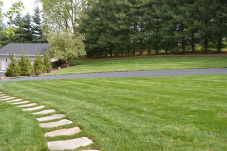 Freshly Manicured Lawn