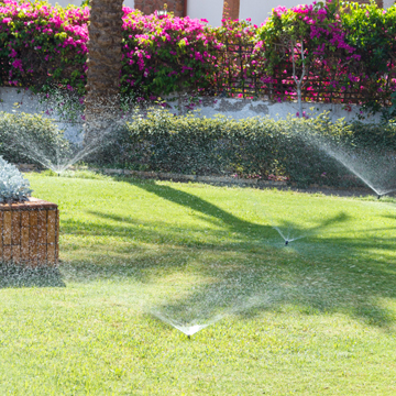 lawn watering guide