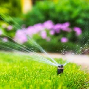 sprinkler ready for spring