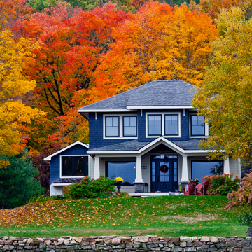 tips for fall tree care