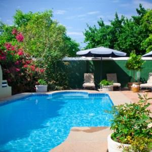 remove trees around pool