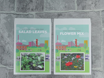 Promoseeds Salad Leaves Flower Mix