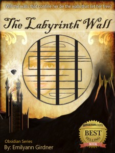The-Labyrinth-Wall-Cover