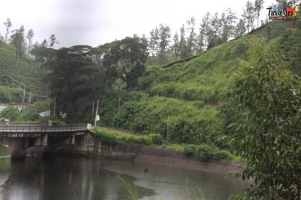 Train Ride from Kandy to Nuwara Eliya - Scenic VIew