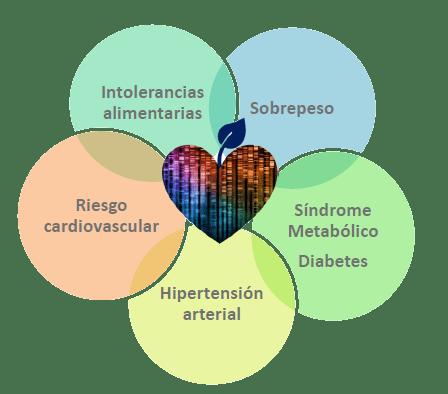 GeneXvitae Nutrigenética