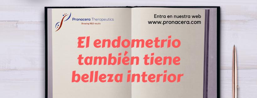 El endometrio también tiene su belleza interior
