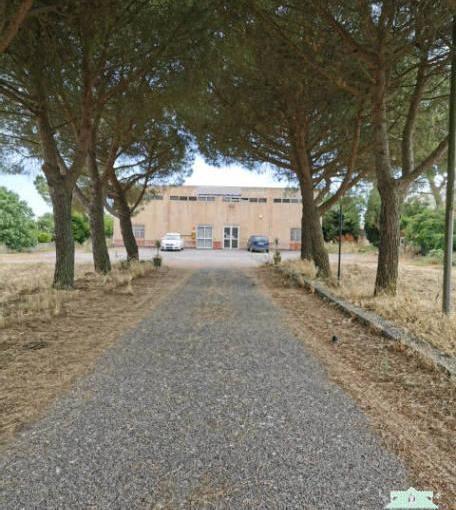 Pronto Casa: Capannone con terreno edificabile in Vendita a Ragusa Foto 1