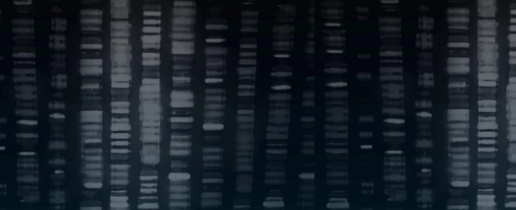 What's Coming Next in Genome Sequencing