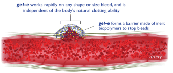 Image from gel-e