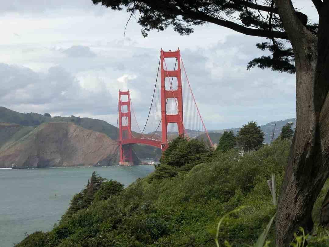 Airbnb Insurance Proper Coverage