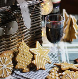 Gingerbread and mulled wine picnic sponsored by Domu
