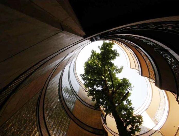 Apartemen Ini Dibangun Tanpa Menebang Satu Pohon
