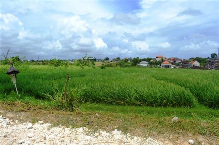 Land in Canggu for sale 17.3 Ares in Canggu Echo Beach Bali