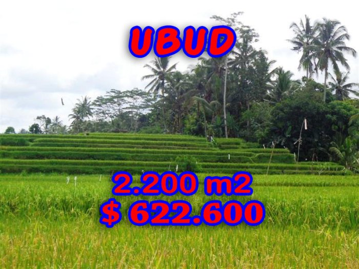 Land for sale in Ubud Bali 2.200 sqm in Ubud Center