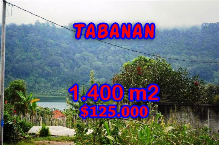 Excellent Property for sale in Bali, land for sale in Tabanan Bali  – TJTB062