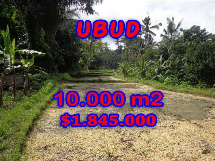 Property in Bali for sale, Fantastic view in Ubud center – TJUB258